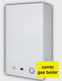 Heatline boiler, model 24 Capriz Plus.